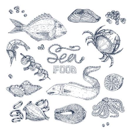 Insieme degli schizzi monocromatici isolati con frutti di mare tra cui pesci calamari e gamberi e gamberetti gamberi illustrazione vettoriale Archivio Fotografico - 82264565