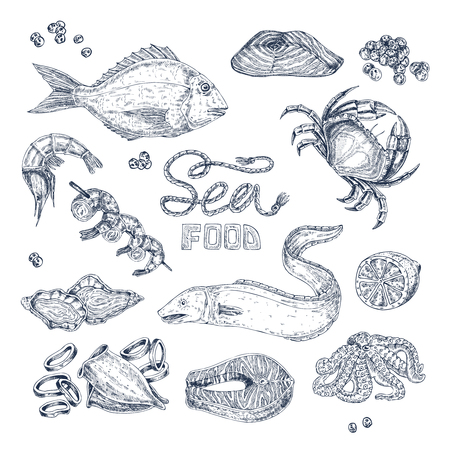 Set of isolated monochrome sketches with seafood including fishes squid and shrimps caviar and crab vector illustration