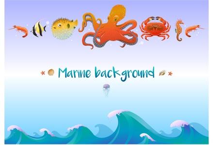 Cartoon sea fauna template with marine creatures and animals vector illustration
