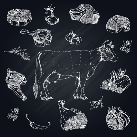 Meat Monochrome Hand Drawn Set Illustration