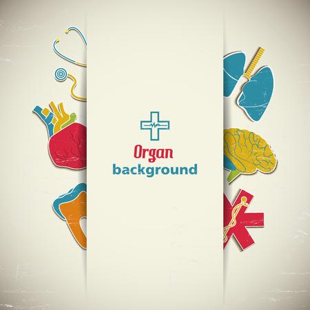 Medical Organ Background Иллюстрация