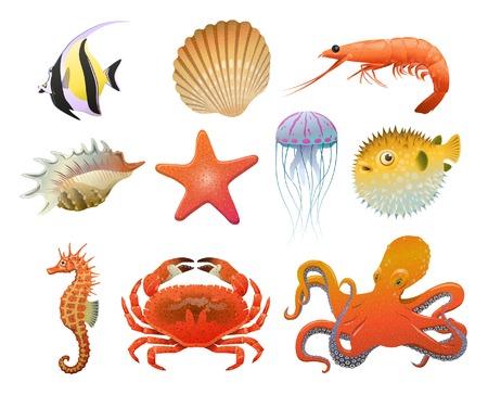 Los elementos de la fauna del mar de la historieta fijados con las cáscaras del camarón caballitos de mar estrellas medusas cangrejo del pulpo del disco del disco de los pescados del fumador aislaron la ilustración del vector Foto de archivo - 84925003