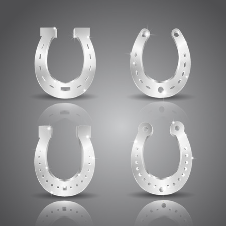 Silver Horseshoe Icon Set