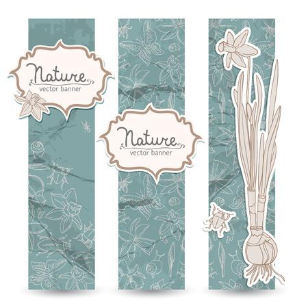 Romantische lente narcissen Banner Set Stock Illustratie