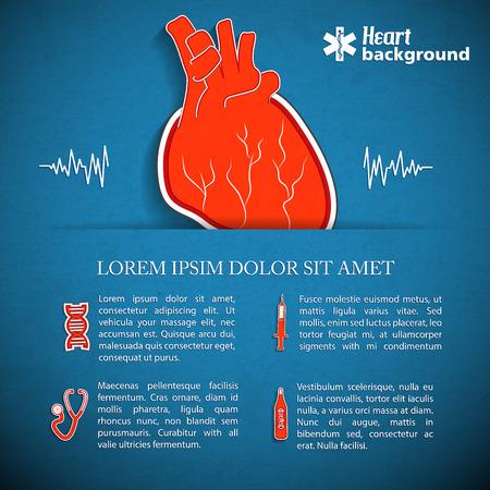 Human organs concept