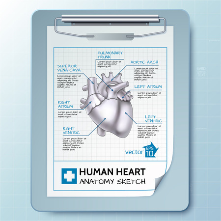 Medical Notepad Template Çizim