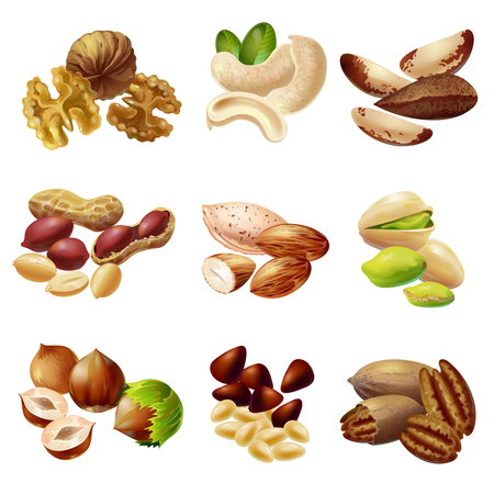 Cartoon style Healthy Nuts Set Stock Illustratie