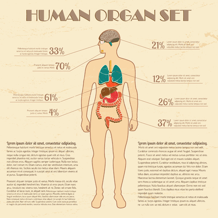 Medical infographic set with human silhouette and internal organs vector Illustration Çizim