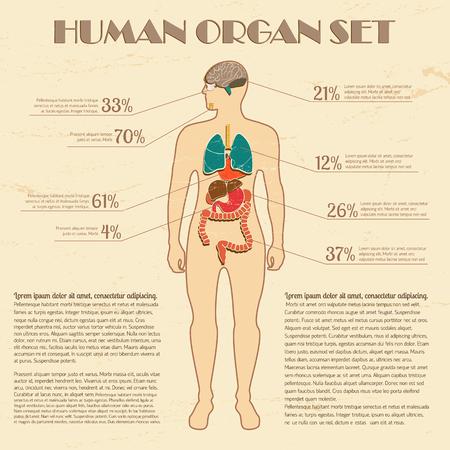 Medische infographic set met menselijk silhouet en interne organen vector illustratie