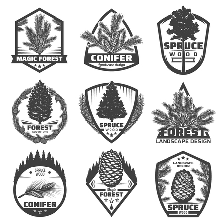 Vintage Monochrome Conifers Labels Set in isolated background