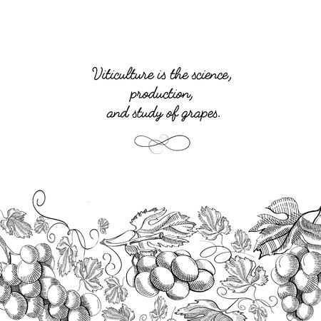 Decorative Frame Vertical Scroll Ornament Doodle Illustration