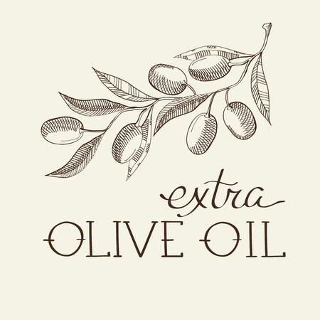 Sprig of olive decorative sketch with sprouts and leaves hand drawn cartoons vector illustration. Ilustração