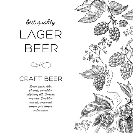 Monochrome hop ornament card with hop blossom in the vertical background to the right and words lager beer of best quality to the left hand drawn doodle vector illustration