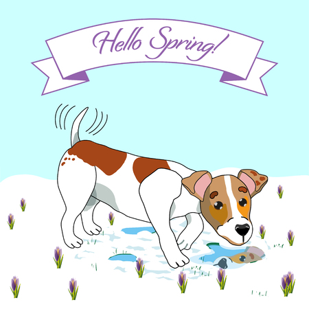 Colorful Hello Spring Poster with dog design. Illustration