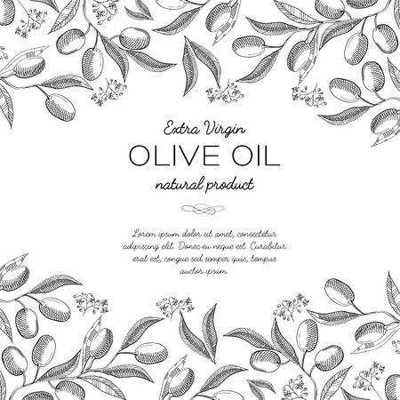 De abstracte vectorillustratie van olijfolieingrediënten