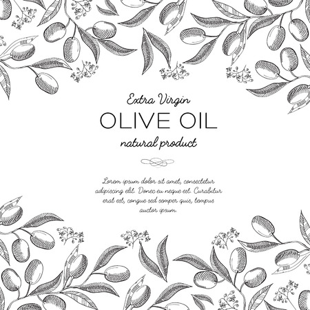 Olive oil ingredients abstract vector illustration