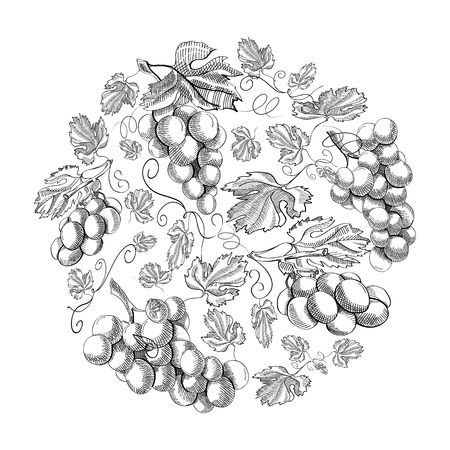 Circle Pattern Bunches Of Grape Doodle