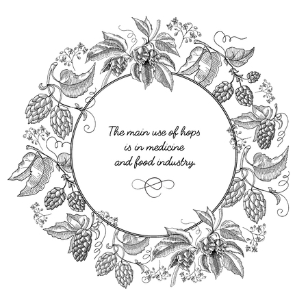Beer hop round wreath sketch composition with beautiful cartoons of blooms and inscription in the center about using of this herb hand drawing vector illustration.