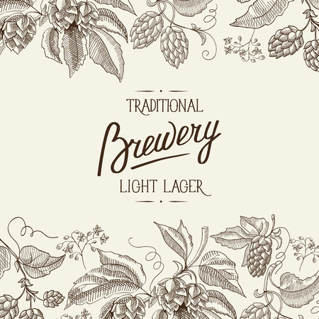Abstract natural botanical light poster with calligraphic inscription and beer hop herbal plants in vintage style vector illustration