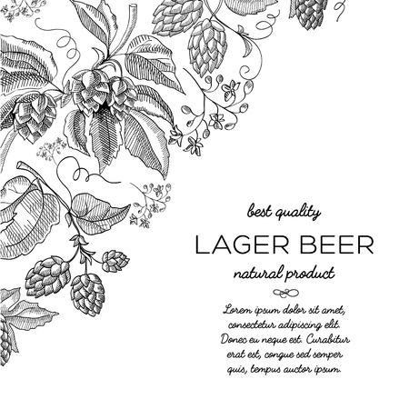 Cadre de coin hop défilement de l & # 39 ; art de la décoration de défilement - bière verte Banque d'images - 95059357