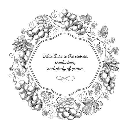 White Colored Round Frame Hand Drawn Doodle