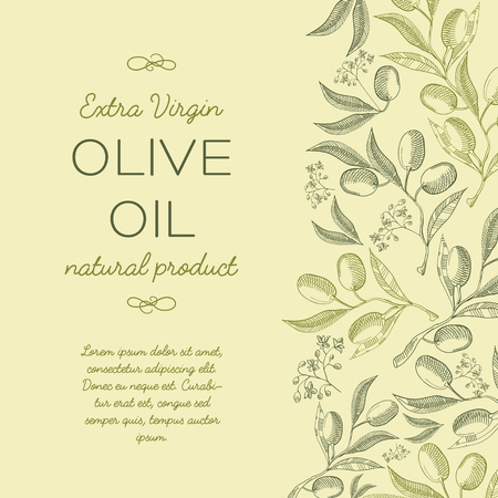 Abstract floral vintage poster with olives tree branches in vintage style on green background vector illustration.