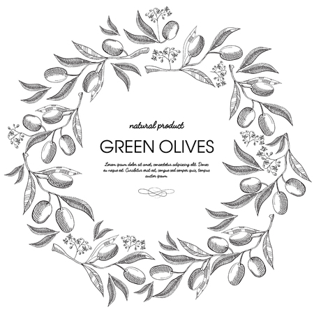 Circle wreath decorated berries sketch composition with sprig of olive and lettering in the center about natural produce of green olives oil hand drawing vector illustration