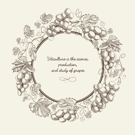 Abstract natural sketch template with text round frame and bunches of grapes on light background vector illustration Ilustração
