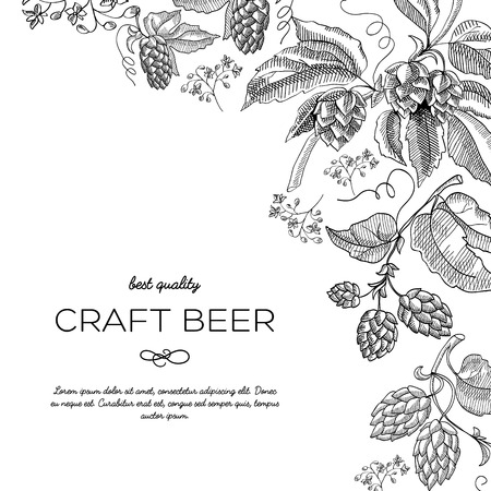 Original corner frame ornament doodle with hop berries and luxury stems near the inscription that craft beer has best quality hand drawn doodle vector illustration.