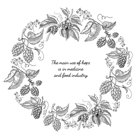 Beer hop round frame sketch composition. Hand drawn branches with leaves and flowers black and white vector illustration.
