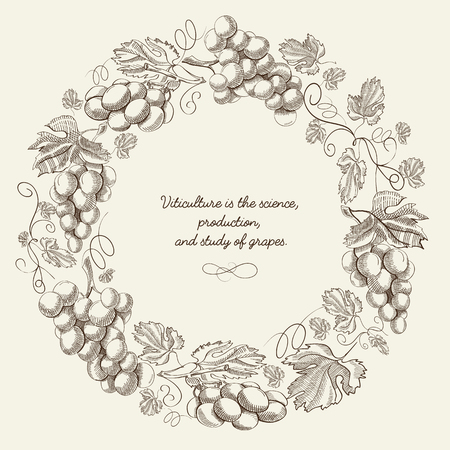 Abstract floral light vintage round composition with text and grapes bunches in hand drawn style vector illustration Ilustração