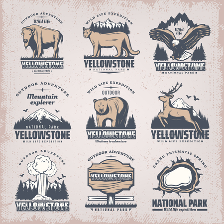 Vintage colored national park emblems set with rare wild animals nature landscapes geyser plank grand prismatic spring isolated vector illustration 일러스트