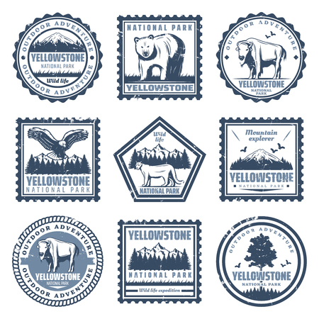 Vintage national park stamps set with inscriptions bear buffalo puma eagle and nature landscapes isolated vector illustration