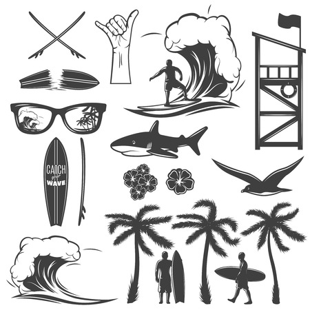 Surfing elements icon set