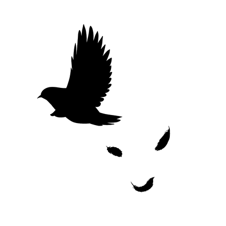 Black flying bird silhouette concept with falling feathers in monochrome style on white background isolated vector illustration Çizim
