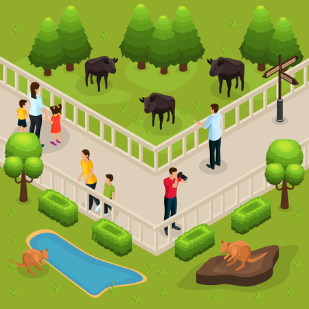 Isometric zoo template with people watching and photographing buffalos and kangaroos vector illustration Illustration