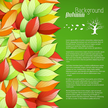 Bright seasonal floral poster with text and colorful beautiful autumn falling leaves on green background vector illustration