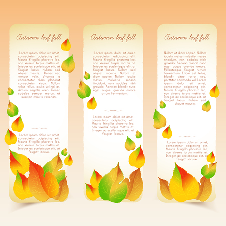 Abstract bright seasonal floral vertical banners with text and colorful light falling autumn leaves vector illustration