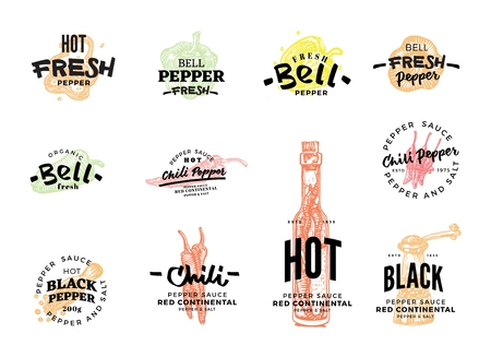 Isolated colored chili pepper  set with hot fresh pepper bell pepper fresh chilly pepper sauce descriptions vector illustration Ilustração