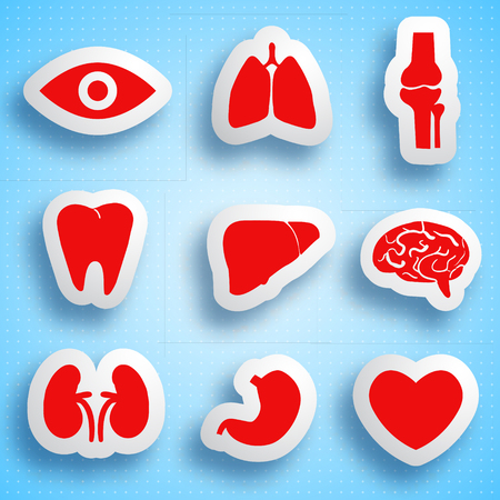 Anatomical icons set of human internal organs on light blue dotted background isolated vector illustration Illustration