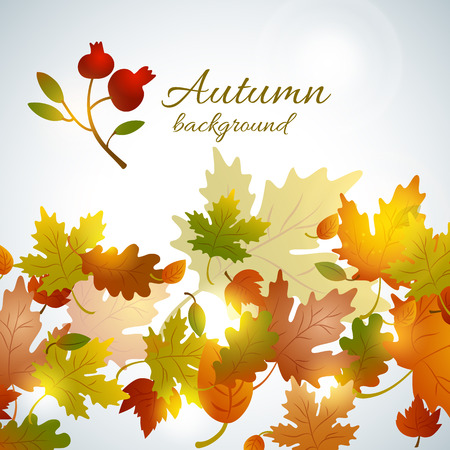 Colorful autumn with faded clover leaves composition