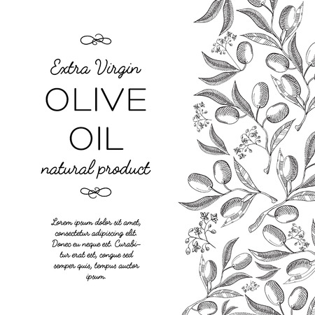 Twigs olive background. Sketch. Hand drawing. Design concept. Vector Illustration, eps10, contains transparencies. Ilustração