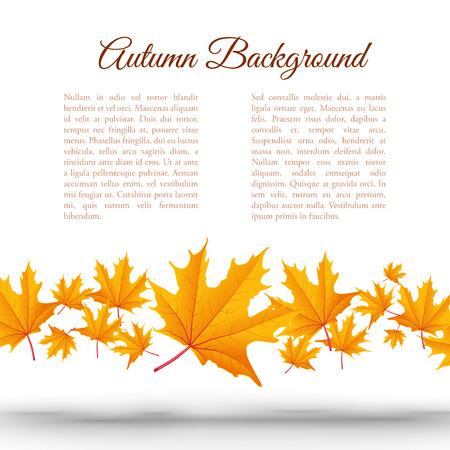 Abstract light autumn floral template with text and falling orange maple leaves on white background Çizim