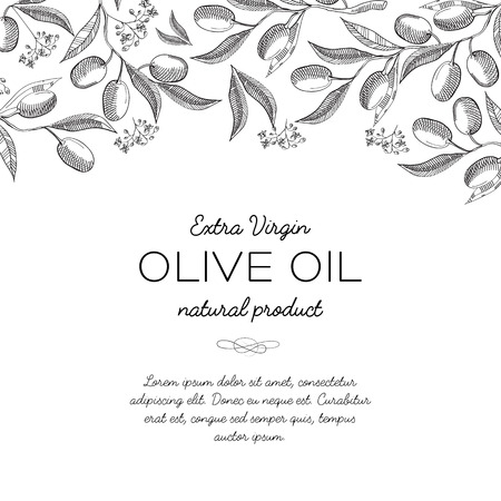 Monochrome original decorative design original postcard doodle hand drawn with lettering that extra virgin olive oil natural product vector illustration Illustration
