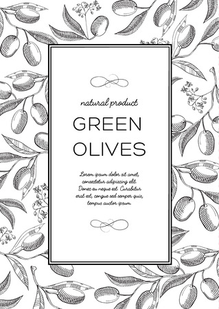 Monochrome square frame composition with words about extra virgin, olive oil and natural product in the center hand drawn sketch vector illustration