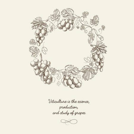 Abstract berry wreath vintage poster with bunches of grapes and inscription on light background vector illustration Ilustração