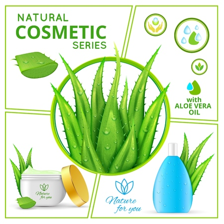 Realistic natural cosmetic products composition with aloe vera plants and packages of healthy skincare cream and liquid for face vector illustration 일러스트