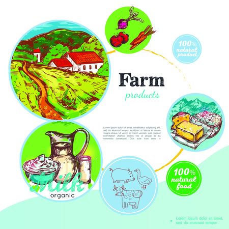 Sketch colorful farm concept with dairy products vegetables pig goose cow and rural landscape vector illustration