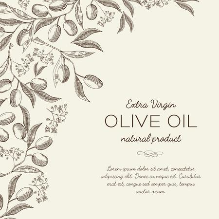 Fond clair botanique abstrait avec du texte et d'élégantes branches d'olivier en illustration vectorielle de style gravure