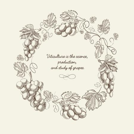 Modèle vintage abstrait couronne naturelle avec des grappes de raisin et citation en illustration vectorielle de style croquis Vecteurs